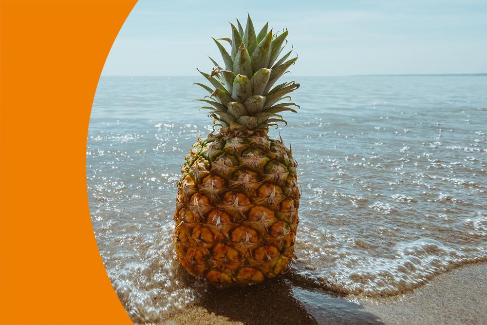 Was ist los mit der Ananas? - Angebote an der FAS