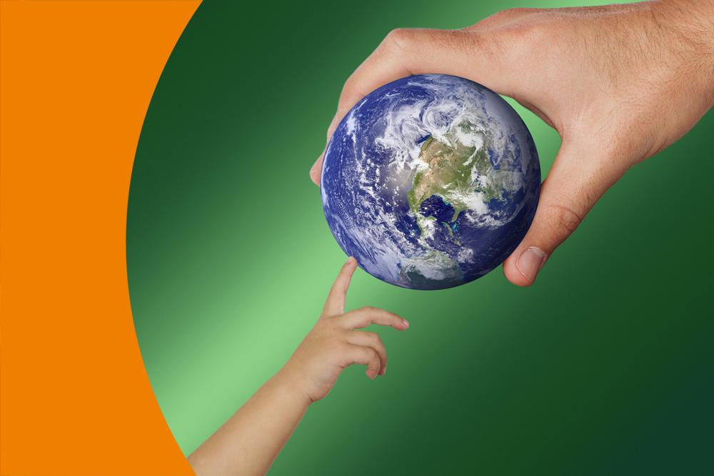 Umweltbewusstsein und Nachhaltigkeit an der Freien Aktiven Schule Stuttgart